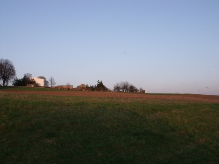 mirow-okolice-0069